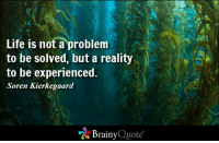 Life is not a problem to be solved, but a reality to be experienced. - Soren Kierkegaard https://www.brainyquote.com/quotes/authors/s/soren_kierkegaard.html #brainyquote #QOTD #life #wisdom #ocean: Life is not a problem  to be solved, but a reality  to be experienced.  Soren Kierkegaard  Brainy  Quote Life is not a problem to be solved, but a reality to be experienced. - Soren Kierkegaard https://www.brainyquote.com/quotes/authors/s/soren_kierkegaard.html #brainyquote #QOTD #life #wisdom #ocean