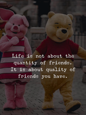 Quantity: Life is not about the  quantity of friends.  It is about quality of  friends you have.