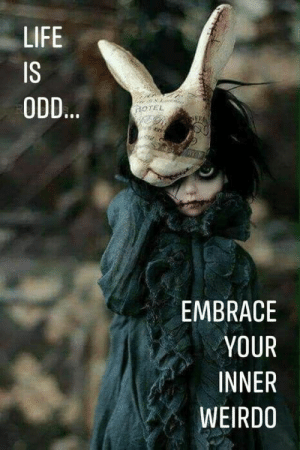 : LIFE  IS  ODD...  OTEL  EMBRACE  YOUR  INNER  WEIRDO