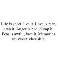 Bad, Life, and Love: Life is short, live it. Love is rare  grab it. Anger is bad, dump it.  Fear is awful, face it. Memories  are sweet, cherish it http://iglovequotes.net/