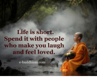 laugh: Life is short.  Spend it with people  who make you laugh.  and feel loved.  e-buddhism com