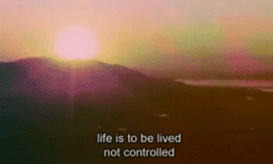 https://iglovequotes.net/: life is to be lived  not controlled https://iglovequotes.net/