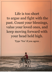 Arguing, Memes, and Too Short: Life is too short  to argue and fight with the  past. Count your blessings,  value your loved ones, and  keep moving forward with  your head held high  Type 'Yes' if you agree <3 #LifeLearnedFeelings