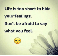 Afraidness: Life is too short to hide  your feelings.  Don't be afraid to say  what you feel.