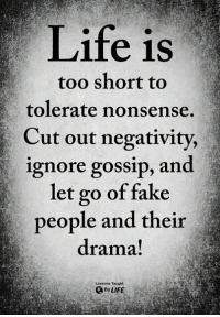 Fake, Life, and Memes: Life is  too short to  tolerate nonsense,  Cut out negativity,  ignore gossip, and  let go of fake  people and their  drama!  Lessons Taught  ByLIFE <3