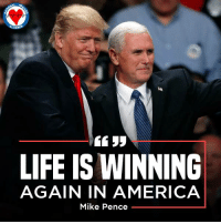 America, Click, and Life: LIFE IS WINNING  AGAIN IN AMERICA  Mike Pence There has never been a better time to push for action on the Life at Conception Act!  Click here to sign your petition!  ►►http://nationalprolifealliance.com/laca2016-S.aspx?npla=IFH17&pid=fb23