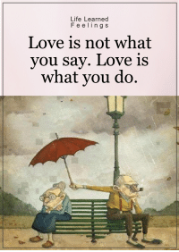 <3: Life Learned  F e e ling s  Love is not what  you say. Love is  what you do. <3