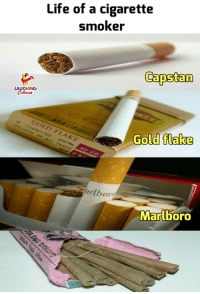 Life, Indianpeoplefacebook, and Cigarette: Life of a cigarette  smoker  Capstan  AUGHING  Gold tlalke  Gold flake  400O  arlbor  Marlboro