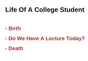 College, Life, and Death: Life Of A College Student  Birth  Do We Have A Lecture Today?  Death