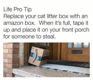 Amazon, Dank, and Life: Life Pro Tip  Replace your cat litter box with an  amazon box. When it's full, tape it  up and place it on your front porch  for someone to steal