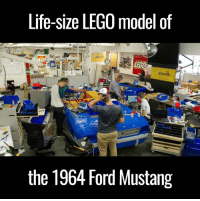Funny, Lego, and Florida: Life-size LEGO model of  LEG  the 1964 Ford Mustang This life-size Lego build of a '64 Mustang is unreal. The finished version is insane! 👏👏  via LEGOLAND Florida