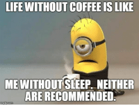 Instagram, Life, and Memes: LIFE WITHOUT COFFEE IS LIKE  ME WITHOUTSLEEP, NEITHER  ARE RECOMMENDED Black Rifle Coffee Company  - check out our memes instagram @coffee__memes!     #coffeememes #BlackRifleCoffeeCompany