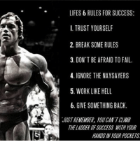 Fail, Memes, and Work: LIFES 6 RULES FOR SUCCESS:  I. TRUST YOURSELF  2. BREAK SOME RULES  3. DON T BE AFRAID TO FAIL  4. IGNORE THE NAYSAYERS  5. WORK LIKE HELL  6. GIVE SOMETHING BACK.  JUST REMEMBER, YOU CAN'T CLIMB  THE LADDER OF SUCCESS WITH YOUR  HANDS IN YOUR POCKETS The 🐐 @schwarzenegger 6 Rules to success! Repost