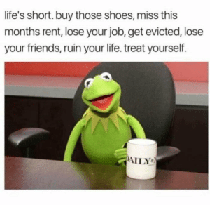 Friends, Funny, and Life: life's short. buy those shoes, miss this  months rent, lose your job, get evicted, lose  your friends, ruin your life. treat yourself.  AILY Enjoy! via /r/funny https://ift.tt/2NpoeRU