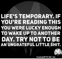 Dank, If Youre Reading This, and 🤖: LIFES TEMPORARY. IF  YOU'RE READING THIS  YOU WERE LUCKY ENOUGH  TO WAKE UP TO ANOTHER  DAY. TRY NOT TO BE  AN UNGRATEFUL LITTLE SHIT.  Facebook FYIFVIG fyif