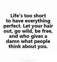 life is too short: Life's too short  to have everything  perfect. Let your hair  out, go wild, be free  and who gives a  damn What people  think about you.  MEDIAWEBAPPS.COM