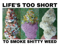 Which would you choose? L/M/R: LIFE'S TOO SHORT  TO SMOKE SHITTY WEED Which would you choose? L/M/R