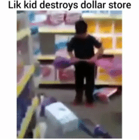 Memes, 🤖, and Dollar Stores: Lik kid destroys dollar store Savage lil man - FULL VIDEO AT PMWHIPHOP.COM LINK IN BIO