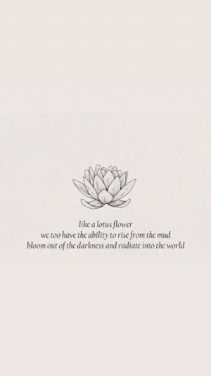the darkness: like a lotus flower  we too have the ability to rise from the mud  bloom out of the darkness and radiate into the world