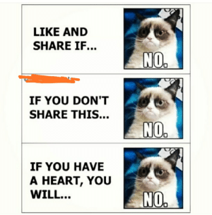 Funny, Heart, and Will: LIKE AND  SHARE IF...  NO.  IF YOU DON'T  SHARE THIS...  NO  IF YOU HAVE  A HEART, YOU  WILL...  NO. My type no!