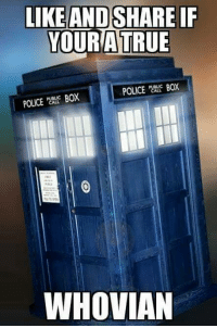 Boxing, Memes, and Police: LIKE AND SHARE IF  OUR ATRUE  POLICE BOX  POLICE CALL  BOX  WHOVIAN