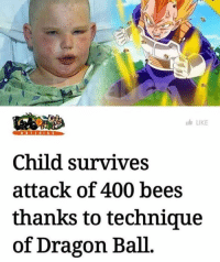 Be Like, News, and Target: LIKE  Child survives  attack of 400 bees  thanks to technique  of Dragon Ball gucciballs: wafflinator:  pantaro:  Here's an article for context.  I know I shouldn't be surprised, but the title is MISLEADING AS HELL. He woke up a hive shooting a BB gun at a junk car. Instead of running, calling for help, or anything ACTUALLY HELPFUL after being swarmed by bees, he stood there and screamed like Vegeta. I'm no apiologist, or any scientist for that matter, but I imagine keeping your mouth open while being swarmed by insects is not a good idea. If you accidentally swallow one you could potentially choke, they could sting the inside of your mouth, etc. So no, this child did NOT survive a swarm of bees thanks to Dragon Ball. He suffered a lot more than potentially necessary thanks to Dragon Ball.  vegeta taught him a secret technique that obliterated all the bees in the air and you are just upset that if it was you in this situation vegeta would not protect you