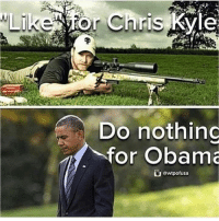 kyle: Like for Chris Kyle  Do nothing  for Obama  owtpofusa