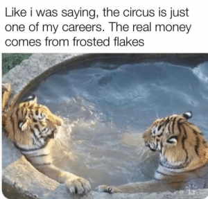 Tony knows what he's talking about. https://t.co/im0W89H8NQ: Like i was saying, the circus is just  one of my careers. The real money  comes from frosted flakes Tony knows what he's talking about. https://t.co/im0W89H8NQ