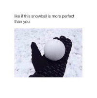 Shrek, Watch, and Watches: like if this snowball is more perfect  than you Watching shrek bc why not