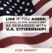 America's Freedom Fighters: LIKE IF YOU AGREE:  ILLEGAL ALIENS SHOULD NOT  BE REWARDED WITH  U.S. CITIZENSHIP!  STOP AMNESTY America's Freedom Fighters