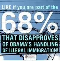 Memes, Patriotic, and Immigration: LIKE if you are part of the  68  THAT DISAPPROVES  OF OBAMA'S HANDLING  OF ILLEGAL IMMIGRATION!  TEA PARTY  PATRIOTS I am one of them!