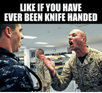Memes, Belligerent, and Been: LIKE IF YOU HAVE  EVER BEEN KNIFE HANDED I can be belligerent when dealing with incompetent officers and SNCOs and subsequently received many knife hands. -El Guapo