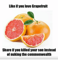 #lifegoals: Like if you love Grapefruit  Share if you killed your son instead  of nuking the commonwealth #lifegoals