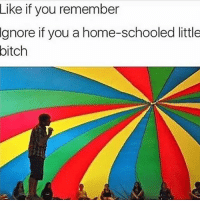 Bitch, Memes, and Home: Like  if you remember  Ignore  if you a home-schooled little  bitch Double Tap 😭 The comment with 0 likes gets a shoutout