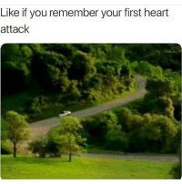 Memes, Heart, and 🤖: Like if you remember your first heart  attack Still freaks me out