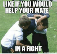 "Memes, 🤖, and Maker: LIKE IF YOU WOULD  HELP YOUR MATE  IN A FIGHT  meme maker, net ""Like"" if you would help you're friend in a fight"