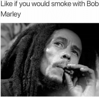Bob Marley, Memes, and 🤖: Like if you would smoke with Bob  Marley The legend @eatweedlove