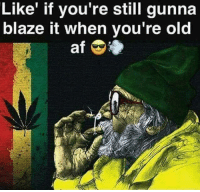 Youre Old: Like' if you're still gunna  blaze it when you're old  af