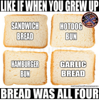 Memes, True, and 🤖: LIKE IFWHEN YOU GREW UP  ONECK N  SANDWICH HOTDOG  BREAD  BUN  HAMBURGER GARLTC  BREAD  BUN  BREAD WAS ALL FOUR Like and comment if this was or is true to you