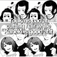 Anime, Bad, and Memes: LIKE IT  IN THE  cutting hair while  AMAZING ⠀⠀⠀⠀⠀⠀⠀⠀⠀ ┄┄┄┄┄┄┄┄┄┄┄┄┄┄┄┄┄┄┄ Mᴏʀᴇ ɪɴғᴏʀᴍᴀᴛɪᴏɴ - Touka is bad at cutting hair while Kaneki is good at it. ━━━━━━━━━━━━━━━━━━━ ⠀┊⠀⠀┊⠀┊⠀⠀┊⠀┊⠀✿⠀⠀┊⠀⠀┊⠀┊⠀┊ ⠀┊⠀⠀┊⠀❀⠀⠀┊⠀┊⠀⠀⠀⠀ ┊⠀⠀┊⠀┊⠀✿ ⠀❀⠀⠀┊⠀ ⠀⠀⠀✿⠀┊⠀⠀⠀⠀ ┊⠀⠀✿⠀┊ ⠀⠀⠀⠀ ✿⠀⠀⠀⠀⠀ ⠀⠀❀⠀⠀⠀⠀┊⠀⠀⠀ ⠀❀ ┄┄┄┄┄┄┄┄┄┄┄┄┄┄┄┄┄┄┄┄ Aɴɪᴍᴇ - Tokyo Ghoul ┄┄┄┄┄┄┄┄┄┄┄┄┄┄┄┄┄┄┄┄ QOTD: do you like tokyo ghoul? AOTD: YESSSSSSSSS ┄┄┄┄┄┄┄┄┄┄┄┄┄┄┄┄┄┄┄┄ 『 Ignore tags 』 🐾 [ otaku anime] 🐾 [ manga animeedit] 🐾 [ animefact ansatsukyoushitsu] 🐾 [ durarara attackontitan] 🐾 [ akamegakill] 🐾 [ yurionice tokyoghoul] 🐾 [ onepiece] 🐾 [ narutol] 🐾 [ onepunchman] 🐾 [ souleater] 🐾 [ swordartonline] 🐾 [ free] 🐾 [ fairytail] 🐾 [ fullmetalalchemist] 🐾 [ kproject] 🐾[ blueexorcist] 🐾 [ bleach] 🐾 [ superlovers] 🐾 [ noragami] 🐾 [ kurokonobasket] 🐾 [ deathnote] 🐾 [ blackbutler] 🐾 [ kiznaiver] 🐾 [ diaboliklovers] 🐾 ┄┄┄┄┄┄┄┄┄┄┄┄┄┄┄┄┄┄┄