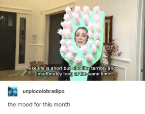 Life, Mood, and Time: like life is short but also like terribly and  insufferably long at the same time  unpiccolobradipo  the mood for this month