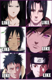The Uchiha Clan. Like if you support them. 