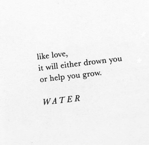 Love, Help, and Water: like love  it will either drown you  help you grow.  or  WATER
