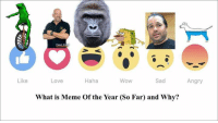 Memes Of The Year: Like  Pawn St  Sad  Haha  Wow  Love  What is Meme Of the Year (So Far) and Why?  Angry