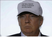 Donald J. Trump tells you to like my page. Also somebody gift me metal gear solid V Phantom pain or any other steam game. https://www.facebook.com/pages/Spicy-Spanish-Memes-part-two-spicier-than-ever/1446093865696515: Like Spicy Spanish  memes on facebook  you dirty beaner. Donald J. Trump tells you to like my page. Also somebody gift me metal gear solid V Phantom pain or any other steam game. https://www.facebook.com/pages/Spicy-Spanish-Memes-part-two-spicier-than-ever/1446093865696515