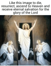 Heaven, Image, and Catholic: Like this image to die,  resurrect, ascend to Heaven and  receive eternal salvation for the  glory of the Lord