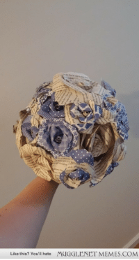 "Memes, Http, and Com: Like this? You'll hate  MUGGLENET MEMES.COM <p>Just finished my bridal bouquet! <a href=""http://ift.tt/1pVBH18"">http://ift.tt/1pVBH18</a></p>"