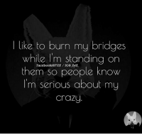 burn: like to burn my bridges  While I'm standing on  them so people know  I'm serious about my  Crazy