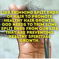 Bad, Bodies , and Brains: LIKE TRIMMING SPLIT ENDS  OR HAIR TO PROMOTE  E HEALTHY HAIR GROWTH  GOD NEEDS TO TRIM SOME  SPLIT ENDS FROM OUR LIFE  THAT ARE PREVENTING  SHEALTHY SPIRITUA  GROWTH. 110 WAYS TO IMPROVE YOURSELF! This ebook entitled 110 WAYS TO IMPROVE YOURSELF is just 1 of many ebooks below that can help you in many areas of your life. You will gain knowledge and wisdom on so many different subjects that will make you a better person. Below are 70 ebooks dealing with so many things from relationships to men to confidence to self esteem to getting organized to reducing stress and so many other things. Ebooks are $2.00 each or you can get the WHOLE collection of ebooks for only $10.00. Take a look below. If you want to read the descriptions to the ebooks or to purchase them, please go to: http://wordsofwisdomforwomen.com/b-200.htm   The titles are: (1) Extremely Huge Collection Of Over 700 Inspirational And Motivational Quotes (2) Defeat Depression (3) Achieving Your Weight Loss Goals (4) How To Be More Productive (5) How To Get A Good Man In Your Life (6) How To Get More Organized (7) Ways To Save Your Marriage (8) The Real Reasons Why A Man Will Cheat On You(9) How To Start A Business With No Experience (10) Destroy Your Anger (11) Green Smoothie Lifestyle (12) How To Become A Magnetic Speaker (13) Shape Up And Have A Better Life (14) Addiction Counseling (15) Reduce Stress (16) Diet And Exercise (17) How To Catch A Cheater (18) Mind Games Men Play On Women (19) Better Relationships (20) How To Get Over The Hurt (21) Lose Weight Today Through Yoga (22) How To Find Your Purpose In Life (23) 500 Things To Say To Your Child To Build Their Confidence (24) 50 Lines and Lies Teenage Boys Use On Teenage Girls   (25) 110 Ways To Improve Yourself (26) How To Organize Your Debt (27) How To Build Your Own Self Esteem (28) Master Your Emotions (29) Managing Your Life By Eating Right (30) How To Quit Smoking (31) Getting Things Done (32) Avoiding Credit Card Disaster 