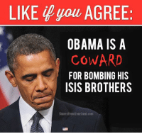 Reposted, but relevant. Donald.J.Trump is right about Barack Obama and #ISIS. #Coward: LIKE you AGREE:  OBAMA IS A  COWARD  FOR BOMBING HIS  ISIS BROTHERS  SharesPromYourAlllll.com Reposted, but relevant. Donald.J.Trump is right about Barack Obama and #ISIS. #Coward